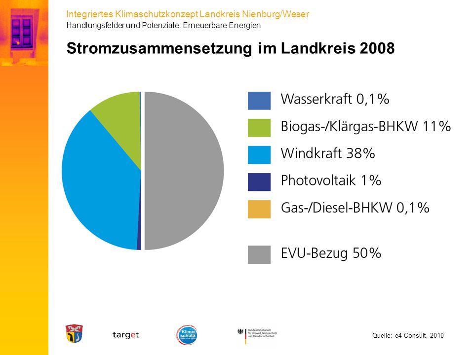 Stromzusammensetzung im Landkreis 2008