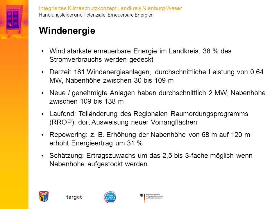 Handlungsfelder und Potenziale: Erneuerbare Energien