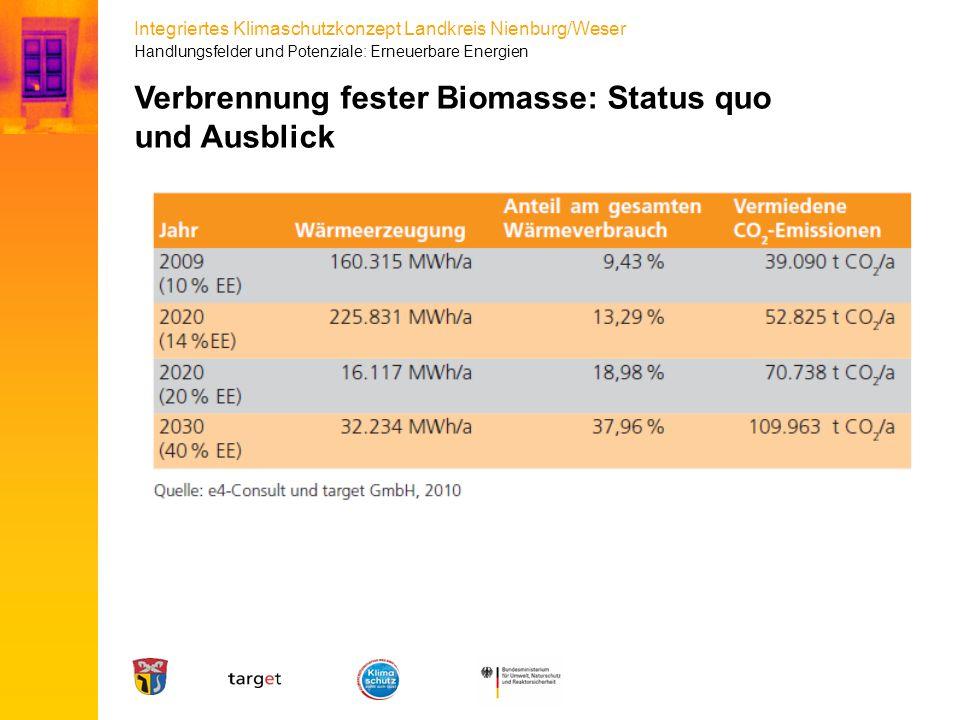 Verbrennung fester Biomasse: Status quo und Ausblick