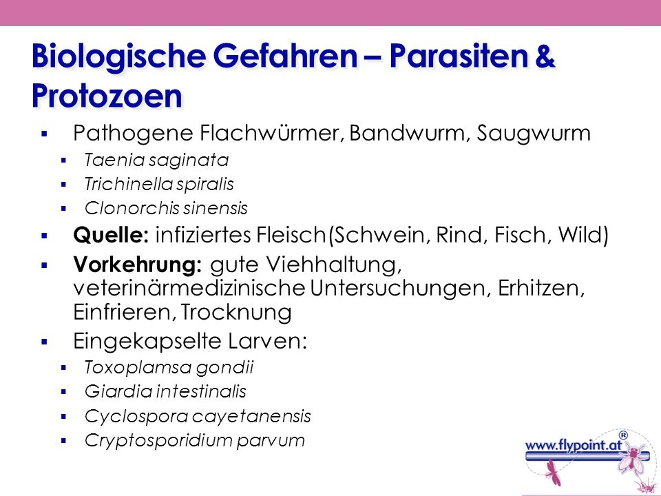 Biologische Gefahren – Parasiten & Protozoen