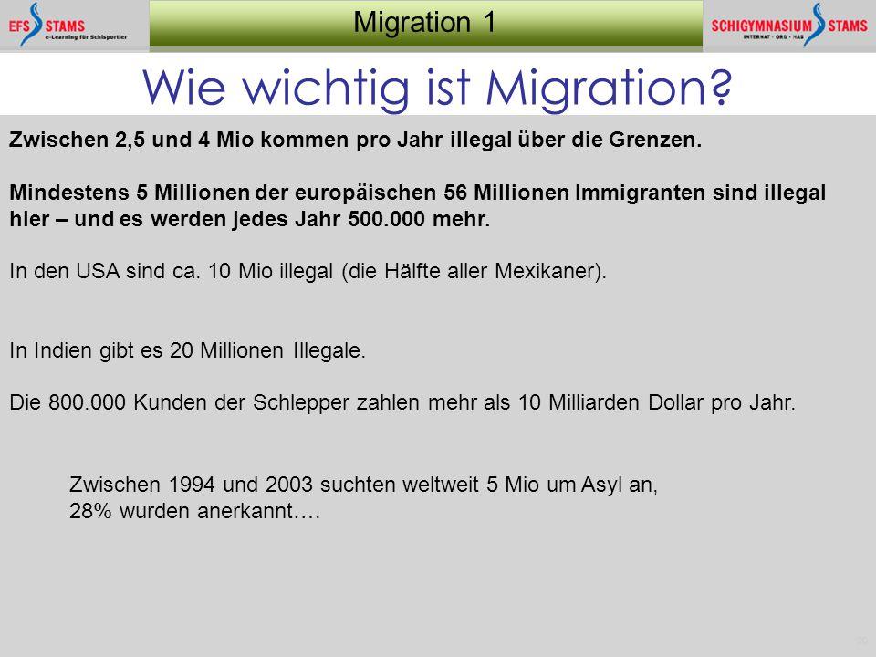 Wie wichtig ist Migration