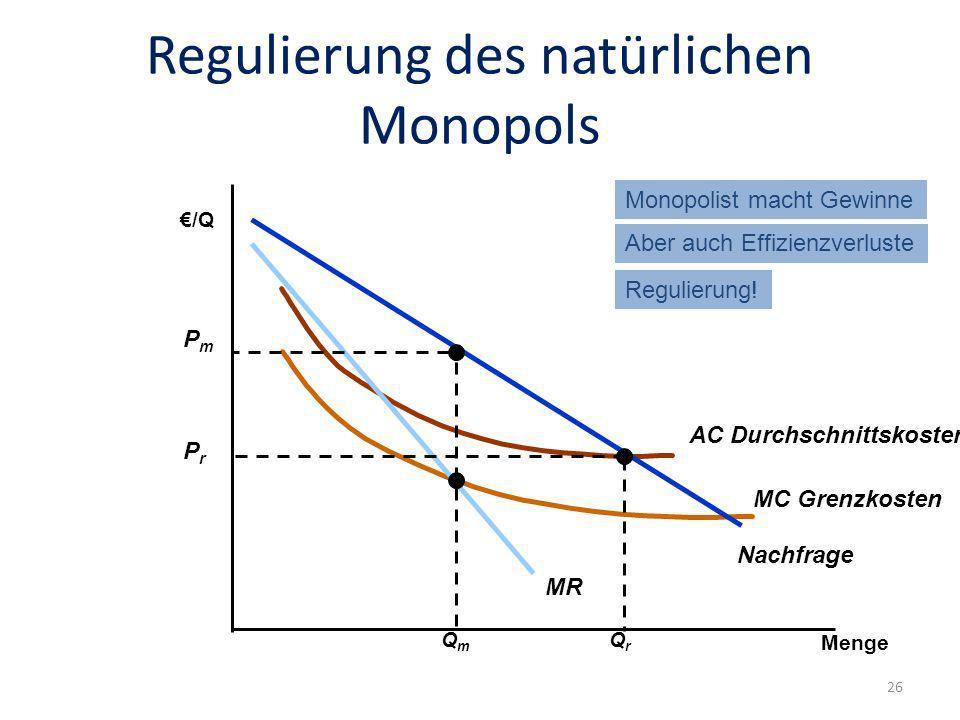 Regulierung des natürlichen Monopols