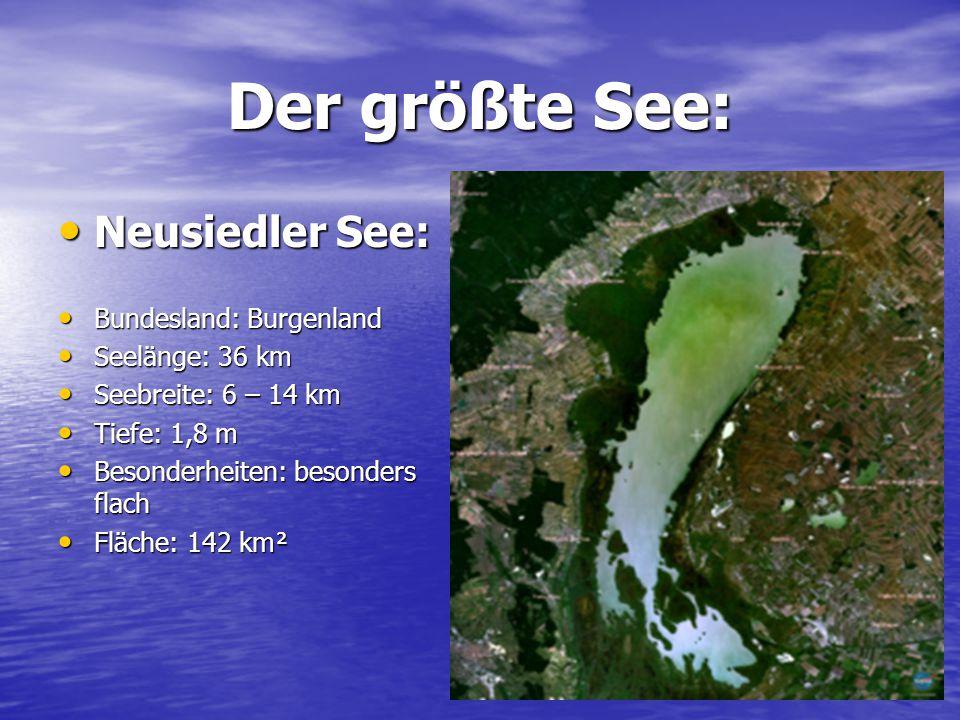 Der größte See: Neusiedler See: Bundesland: Burgenland Seelänge: 36 km