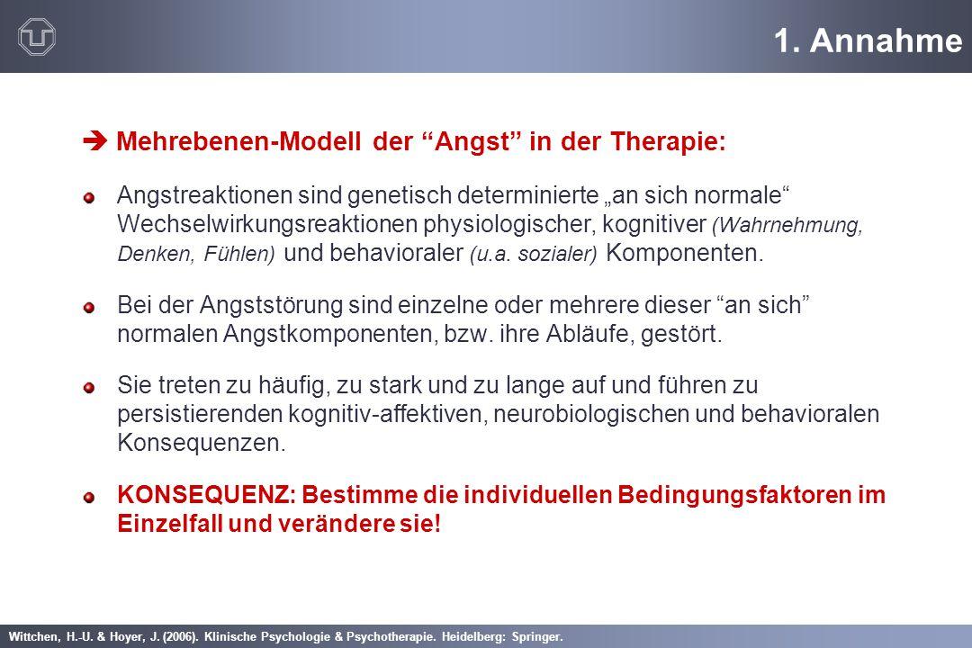 1. Annahme  Mehrebenen-Modell der Angst in der Therapie: