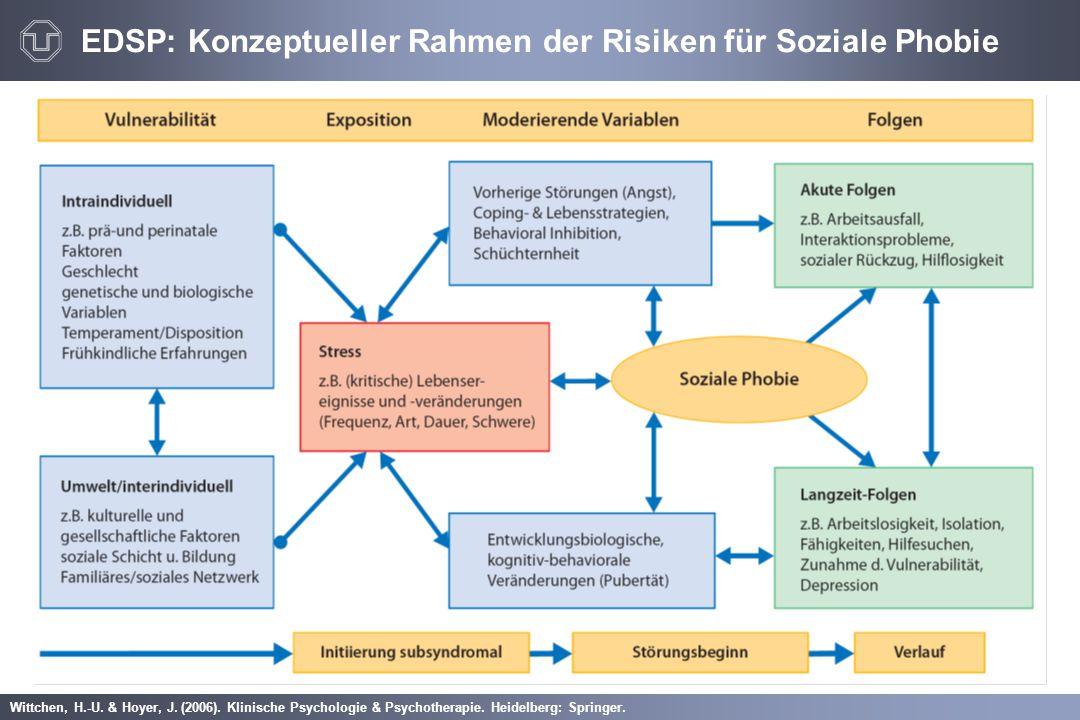 EDSP: Konzeptueller Rahmen der Risiken für Soziale Phobie
