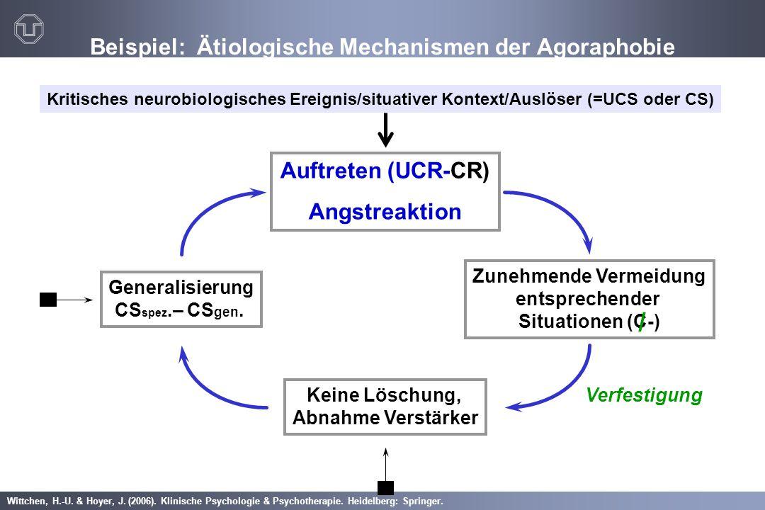 Beispiel: Ätiologische Mechanismen der Agoraphobie