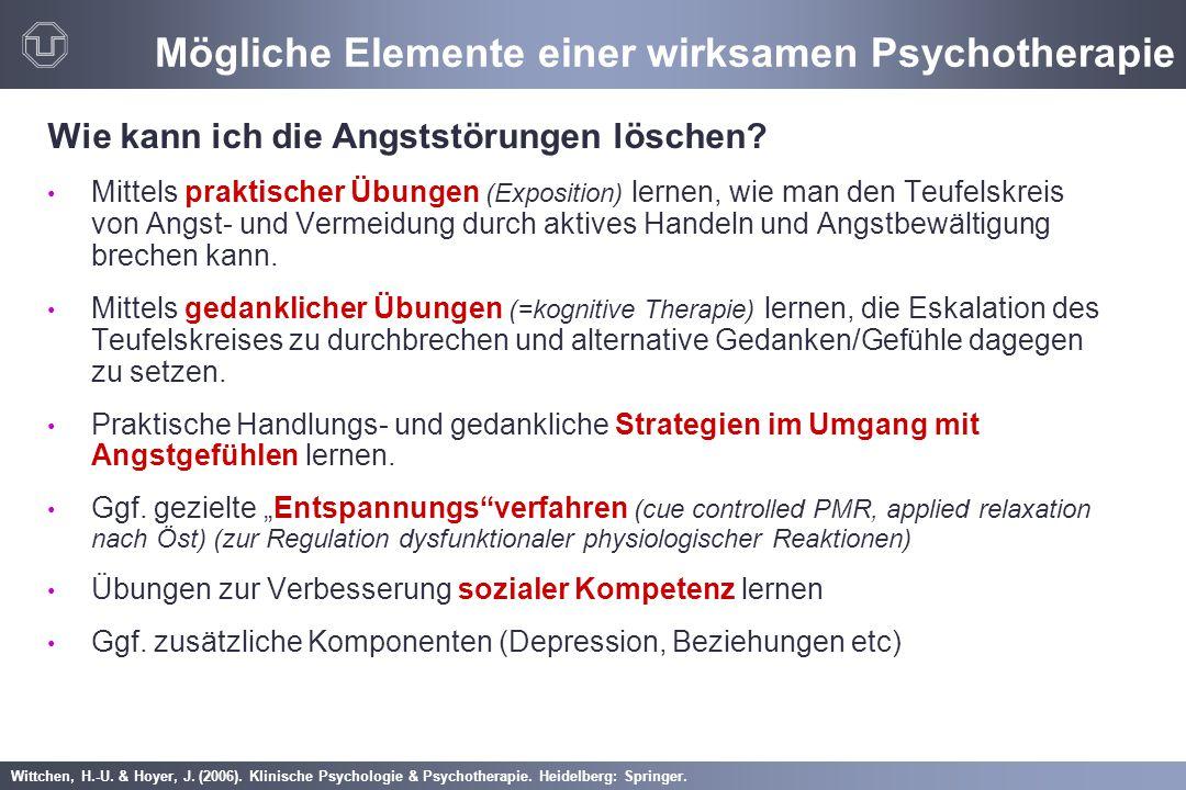 Mögliche Elemente einer wirksamen Psychotherapie
