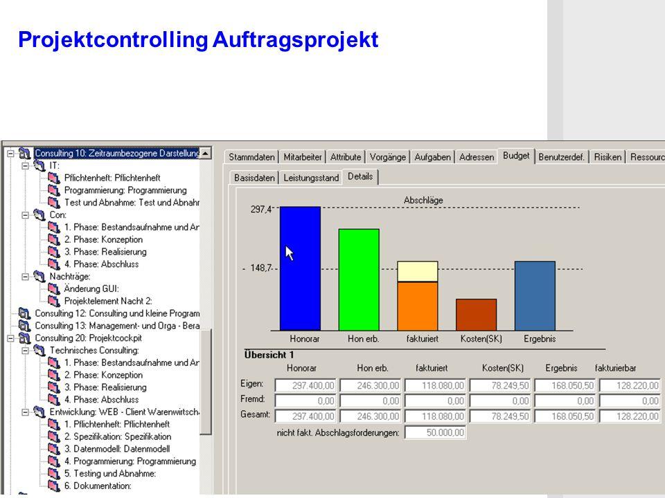 Projektcontrolling Auftragsprojekt