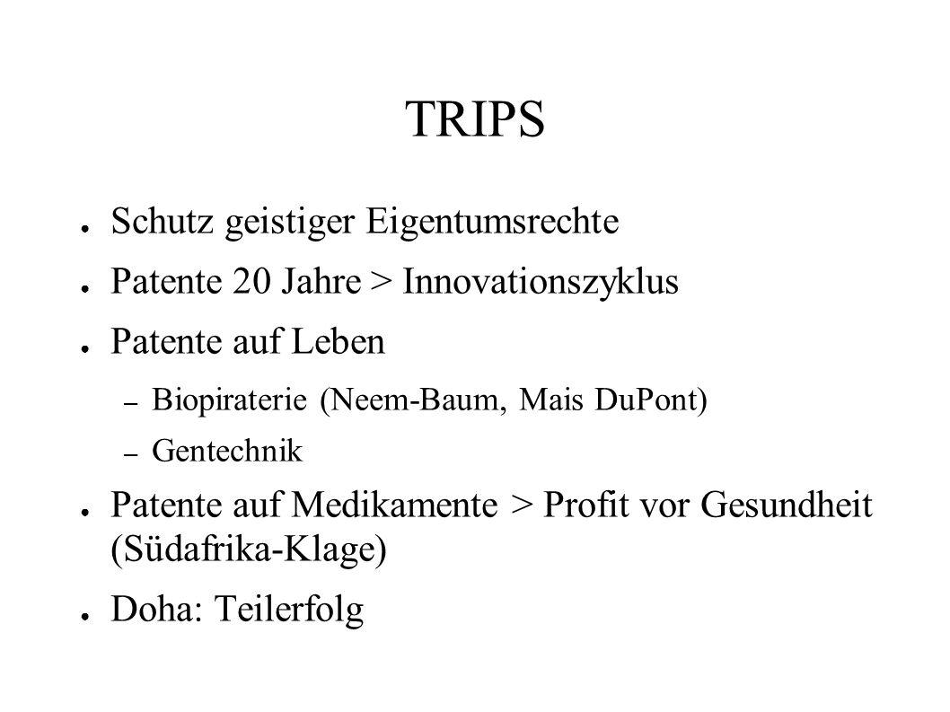 TRIPS Schutz geistiger Eigentumsrechte