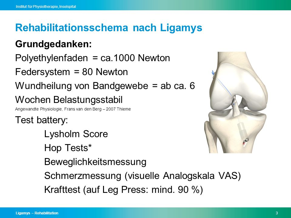 Rehabilitationsschema nach Ligamys