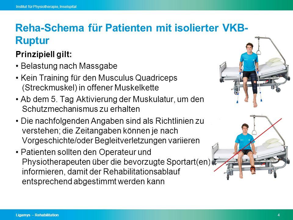 Reha-Schema für Patienten mit isolierter VKB-Ruptur