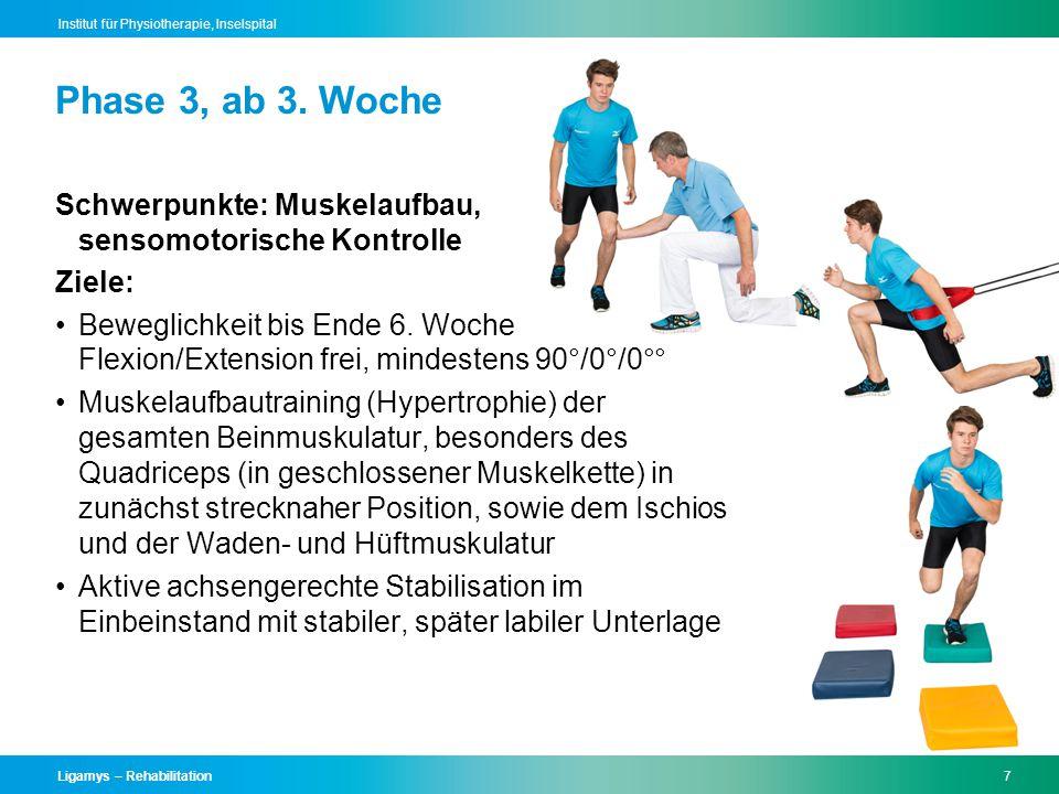 Phase 3, ab 3. Woche Schwerpunkte: Muskelaufbau, sensomotorische Kontrolle. Ziele: