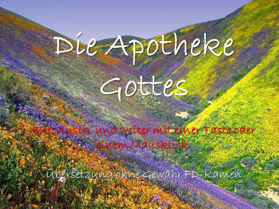 Die Apotheke Gottes mit Musik und weiter mit einer Taste oder einem Mausklick. Übersetzung ohne Gewähr FD-Kamen