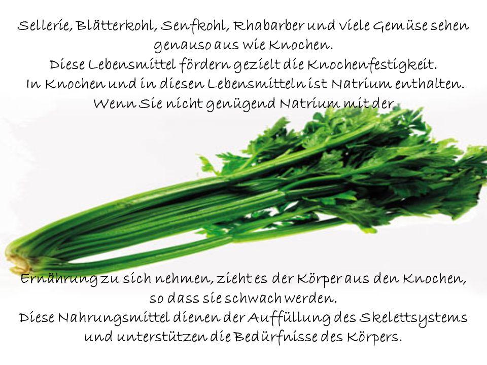 Sellerie, Blätterkohl, Senfkohl, Rhabarber und viele Gemüse sehen genauso aus wie Knochen. Diese Lebensmittel fördern gezielt die Knochenfestigkeit. In Knochen und in diesen Lebensmitteln ist Natrium enthalten. Wenn Sie nicht genügend Natrium mit der