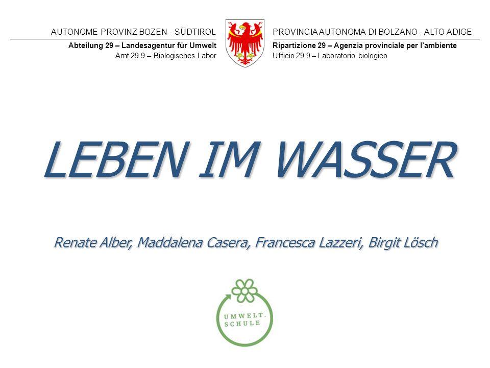 Renate Alber, Maddalena Casera, Francesca Lazzeri, Birgit Lösch