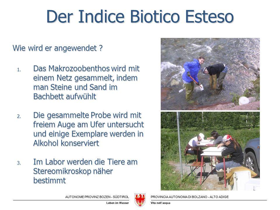 Der Indice Biotico Esteso