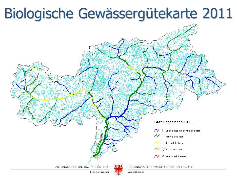 Biologische Gewässergütekarte 2011