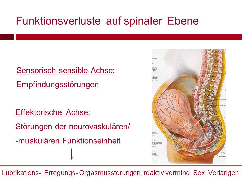 Funktionsverluste auf spinaler Ebene