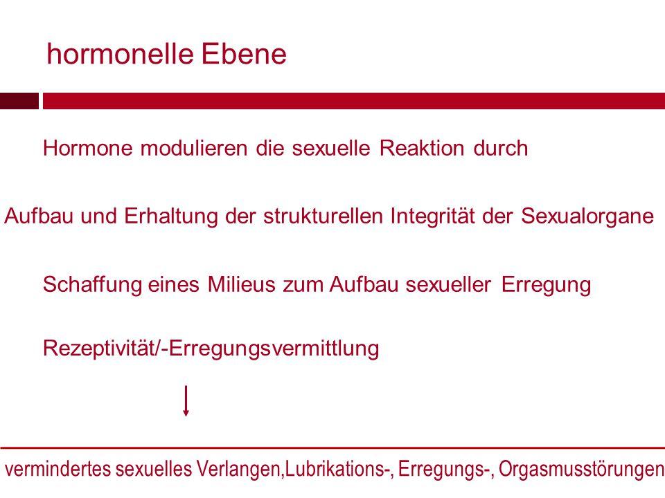 hormonelle Ebene Hormone modulieren die sexuelle Reaktion durch