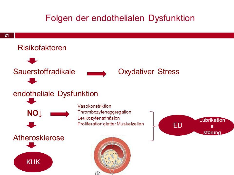 Folgen der endothelialen Dysfunktion