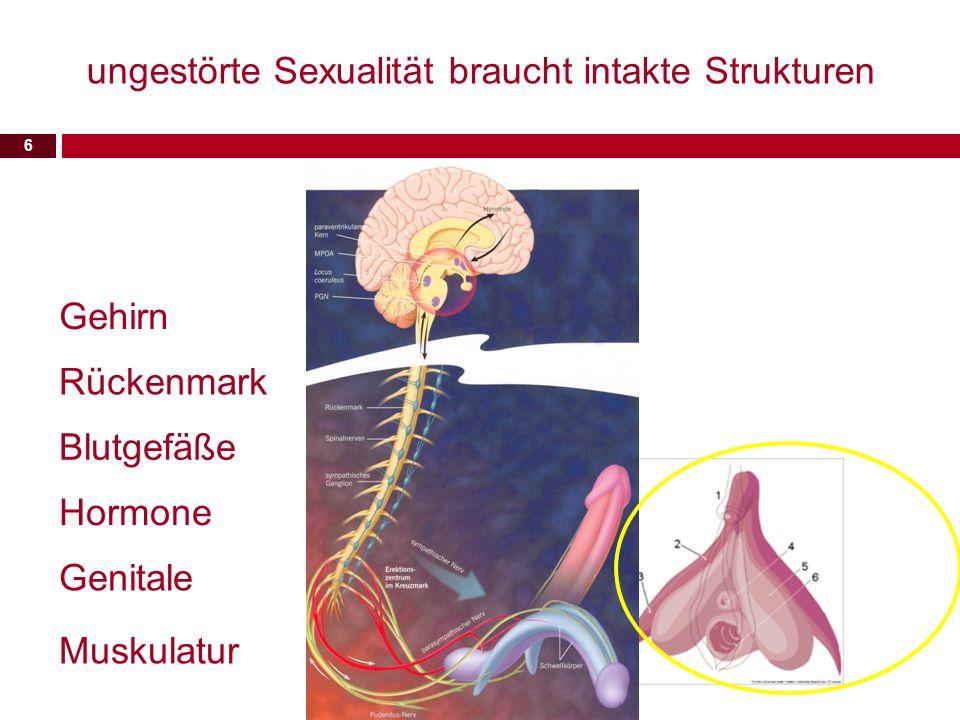 ungestörte Sexualität braucht intakte Strukturen