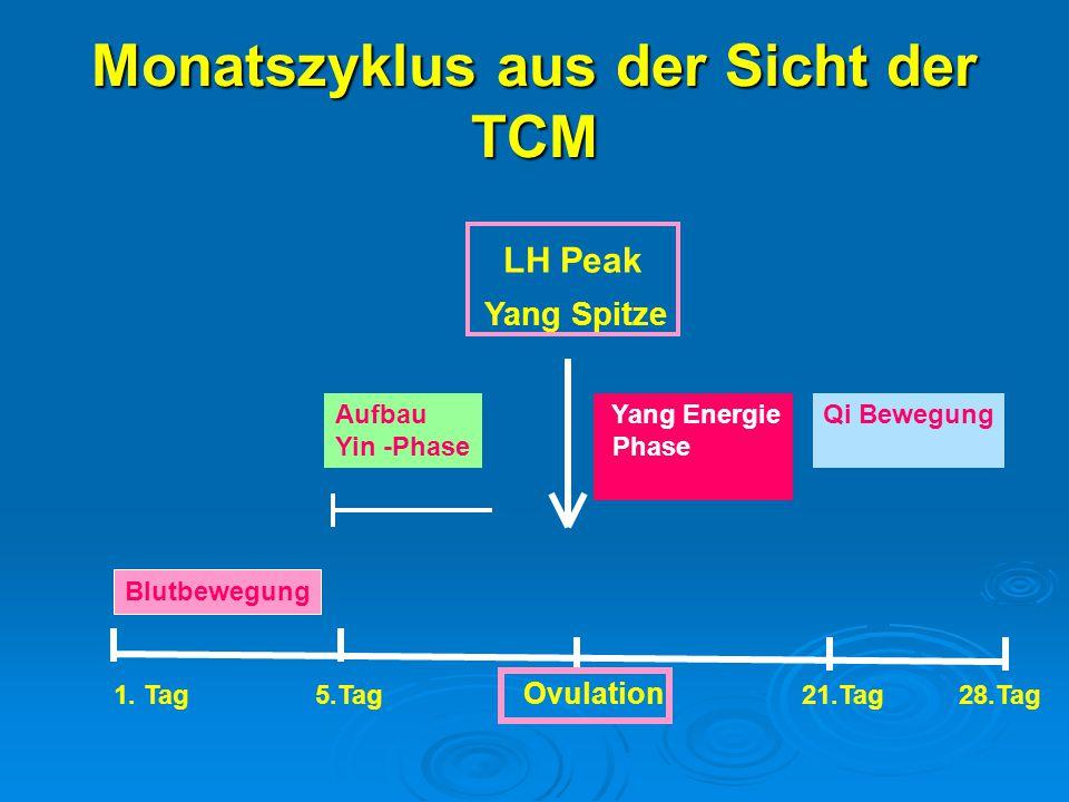 Monatszyklus aus der Sicht der TCM