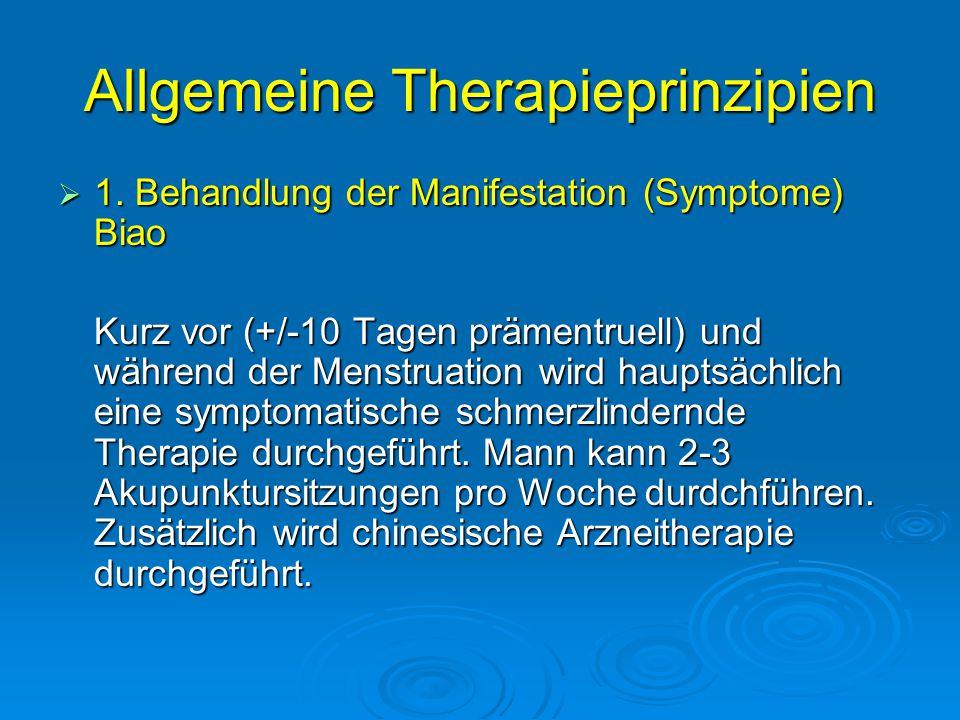 Allgemeine Therapieprinzipien