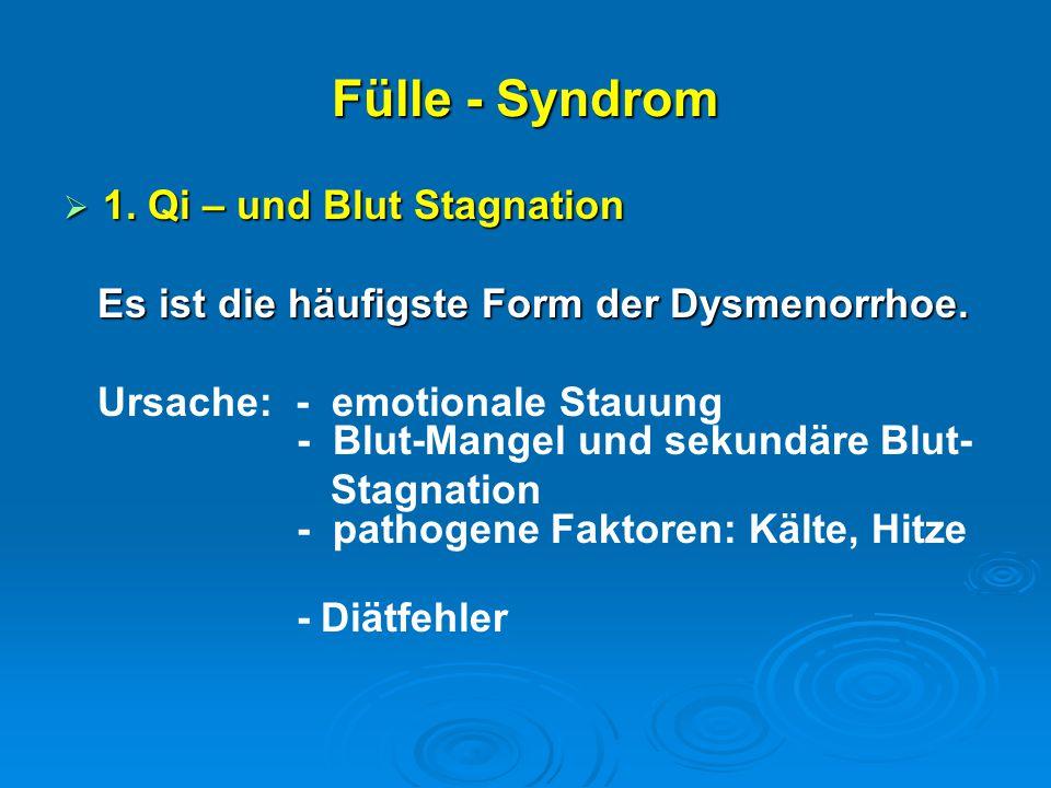 Fülle - Syndrom 1. Qi – und Blut Stagnation