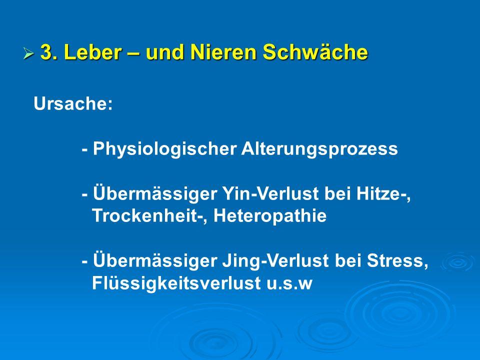 3. Leber – und Nieren Schwäche