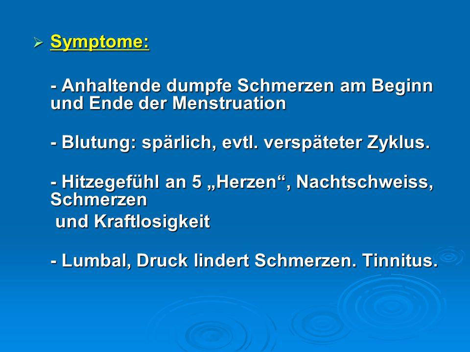 Symptome: - Anhaltende dumpfe Schmerzen am Beginn und Ende der Menstruation. - Blutung: spärlich, evtl. verspäteter Zyklus.