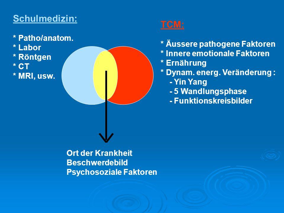 Schulmedizin: TCM: * Patho/anatom. * Labor