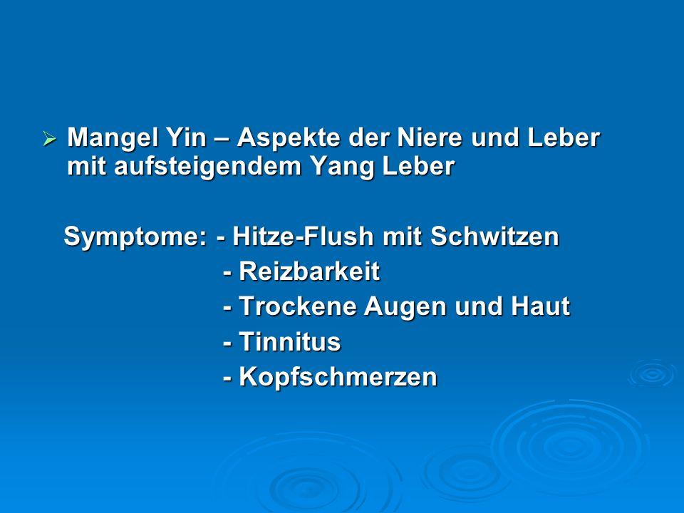 Mangel Yin – Aspekte der Niere und Leber mit aufsteigendem Yang Leber