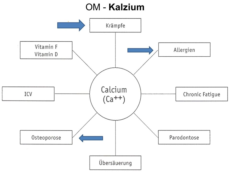 OM - Kalzium