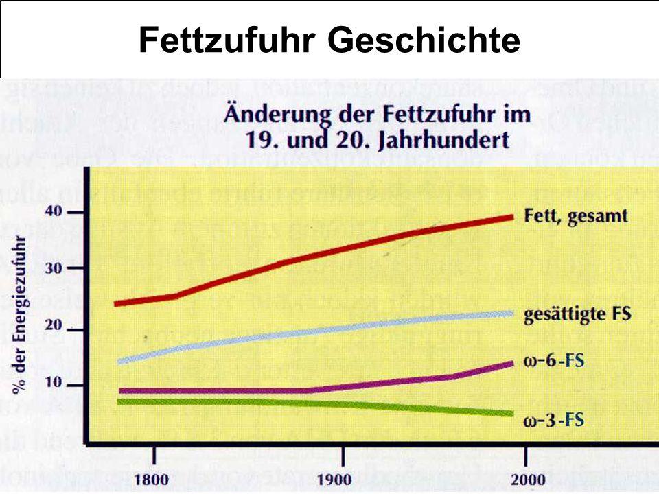 Fettzufuhr Geschichte