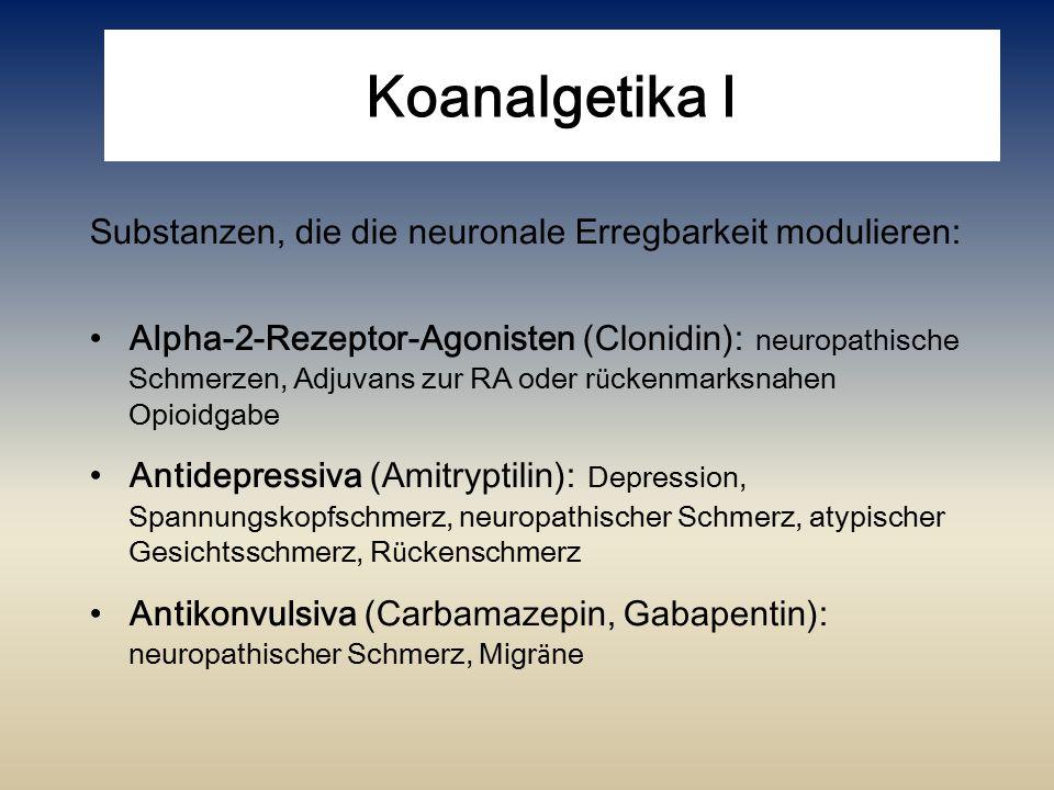 Koanalgetika I Substanzen, die die neuronale Erregbarkeit modulieren: