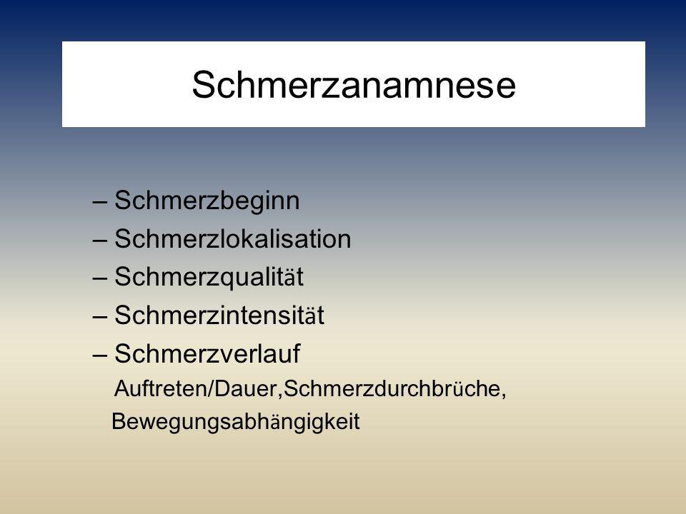 Schmerzanamnese Schmerzbeginn Schmerzlokalisation Schmerzqualität