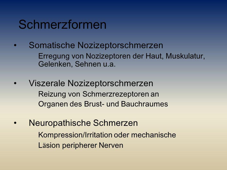 Schmerzformen Somatische Nozizeptorschmerzen