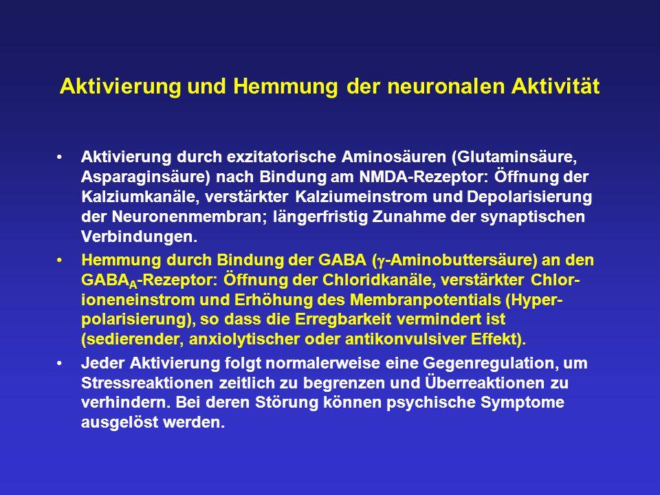 Aktivierung und Hemmung der neuronalen Aktivität