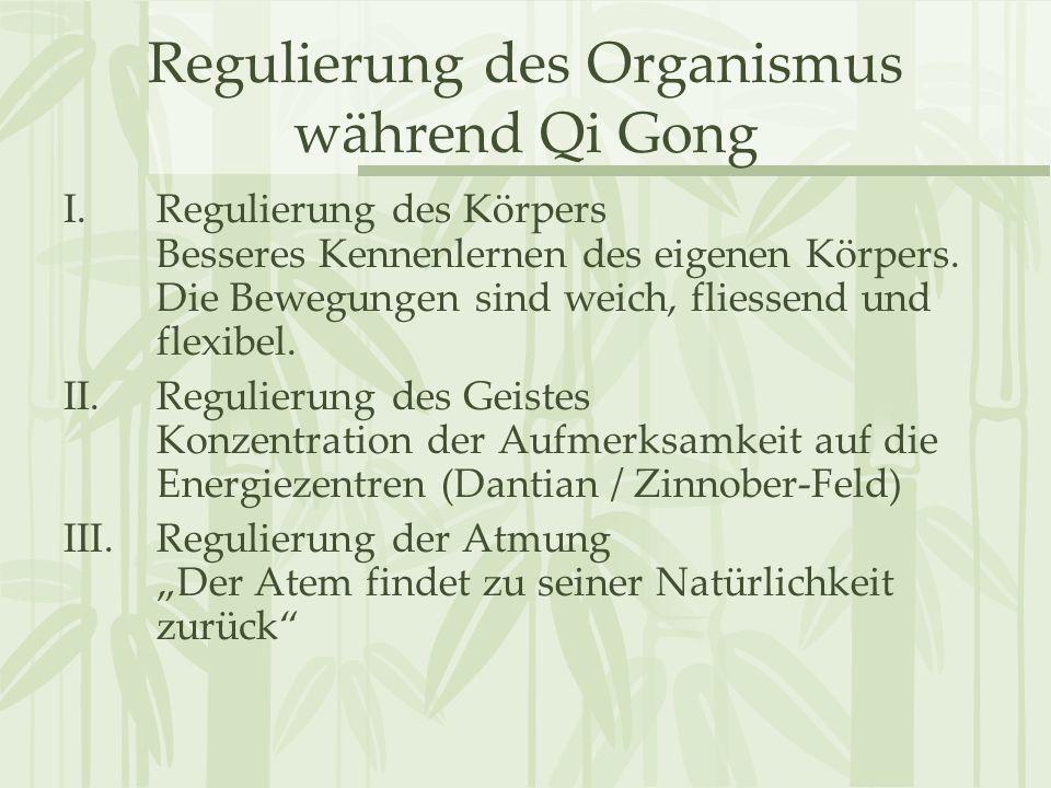 Regulierung des Organismus während Qi Gong