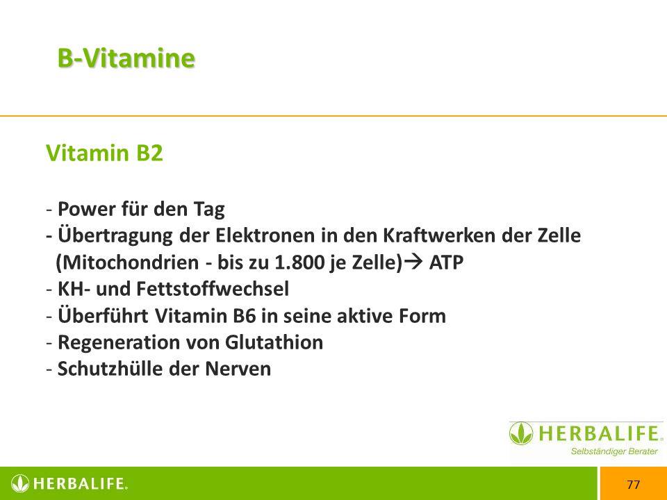 B-Vitamine Vitamin B2. Power für den Tag - Übertragung der Elektronen in den Kraftwerken der Zelle (Mitochondrien - bis zu 1.800 je Zelle) ATP.