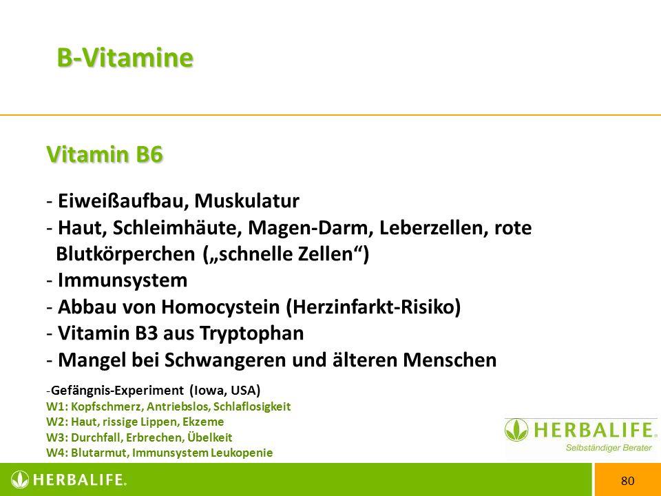 B-Vitamine Vitamin B6 Eiweißaufbau, Muskulatur