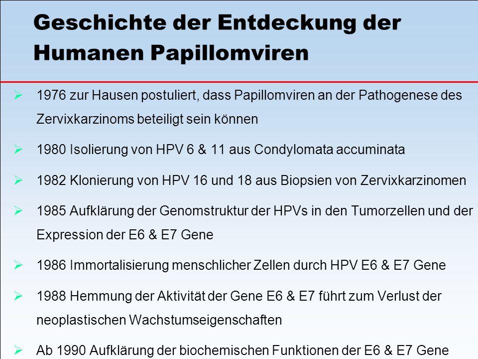 Geschichte der Entdeckung der Humanen Papillomviren