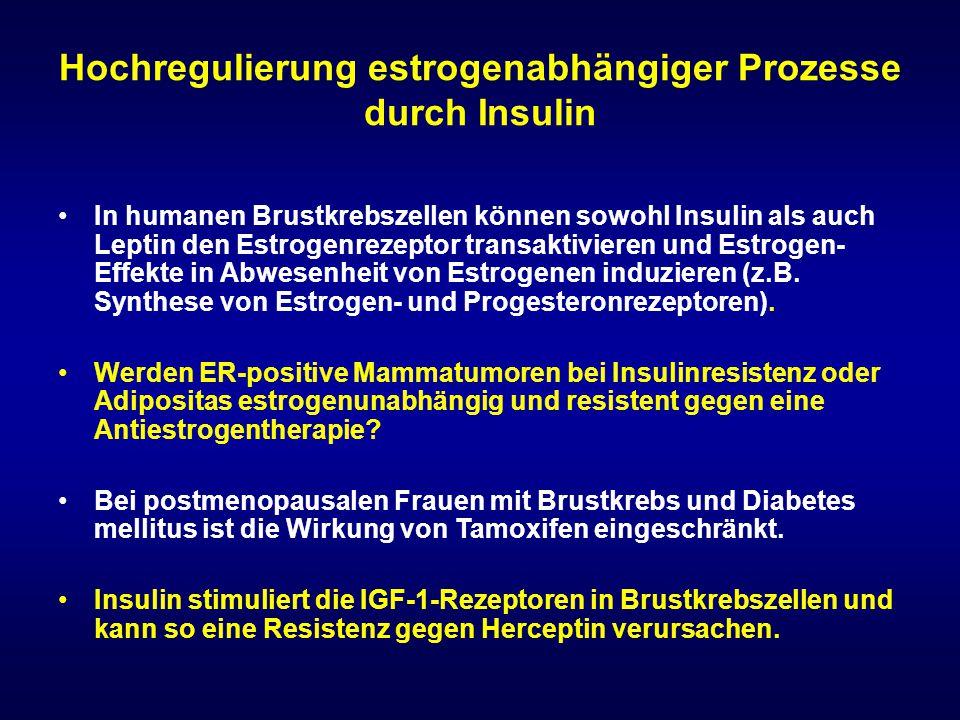 Hochregulierung estrogenabhängiger Prozesse durch Insulin