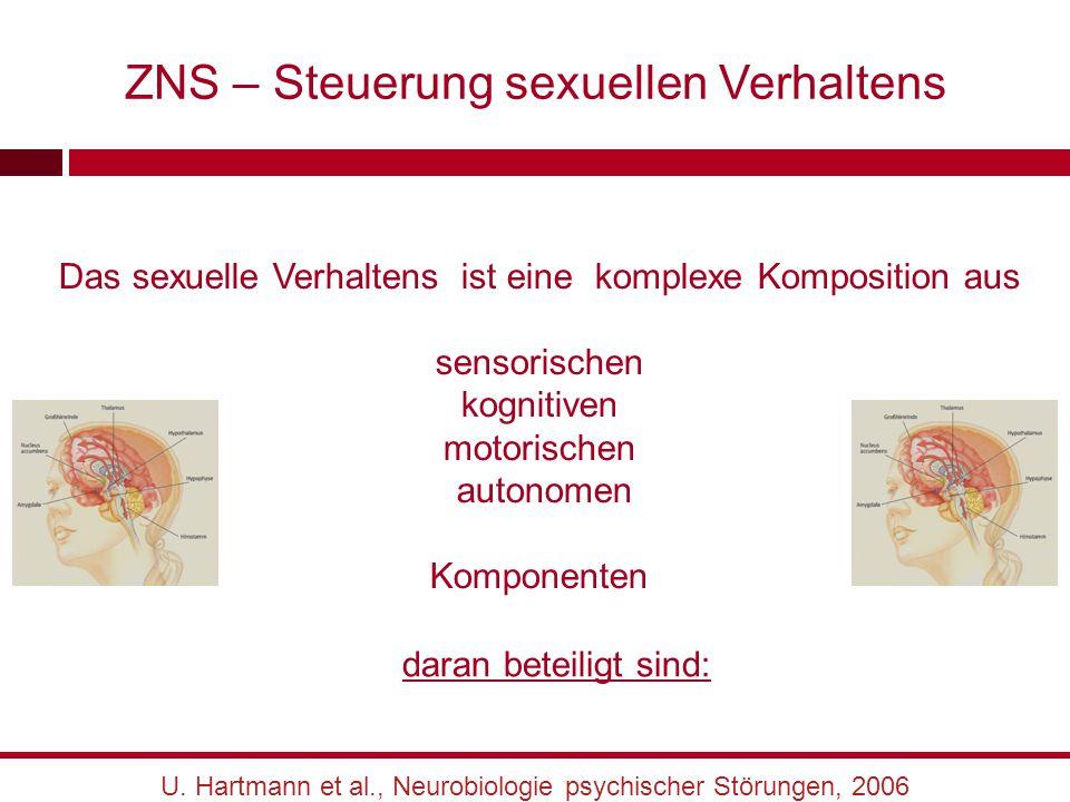 ZNS – Steuerung sexuellen Verhaltens