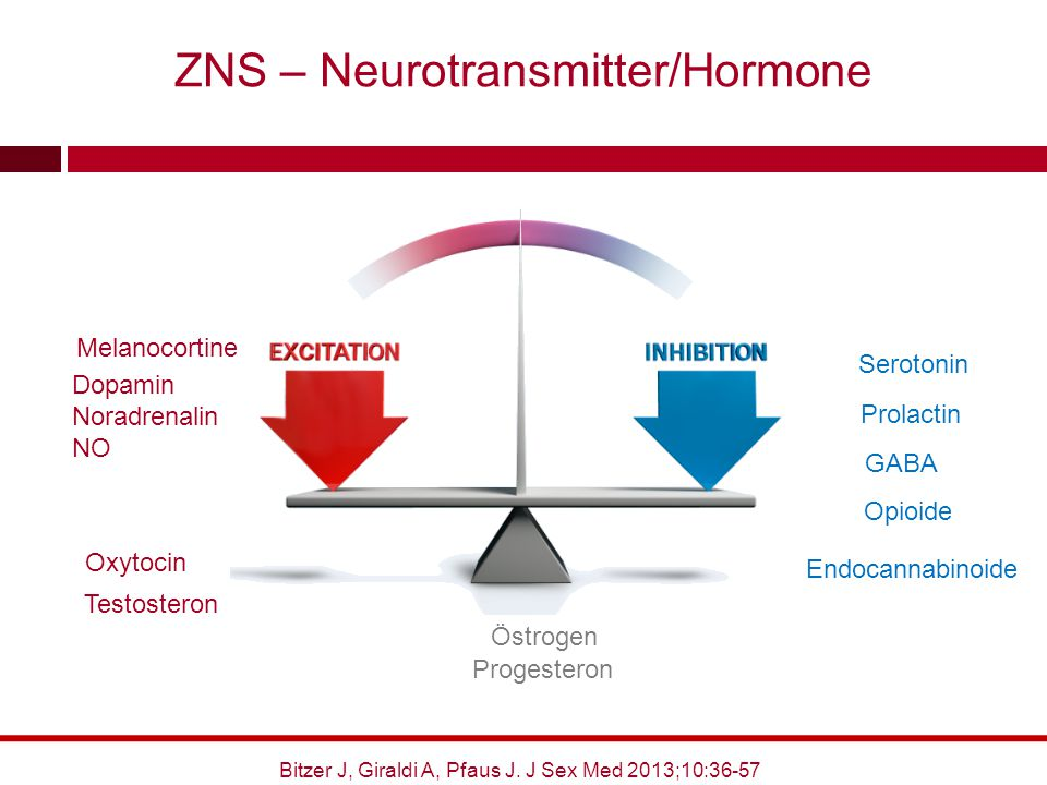 ZNS – Neurotransmitter/Hormone