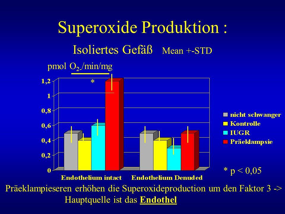 Superoxide Produktion : Isoliertes Gefäß Mean +-STD