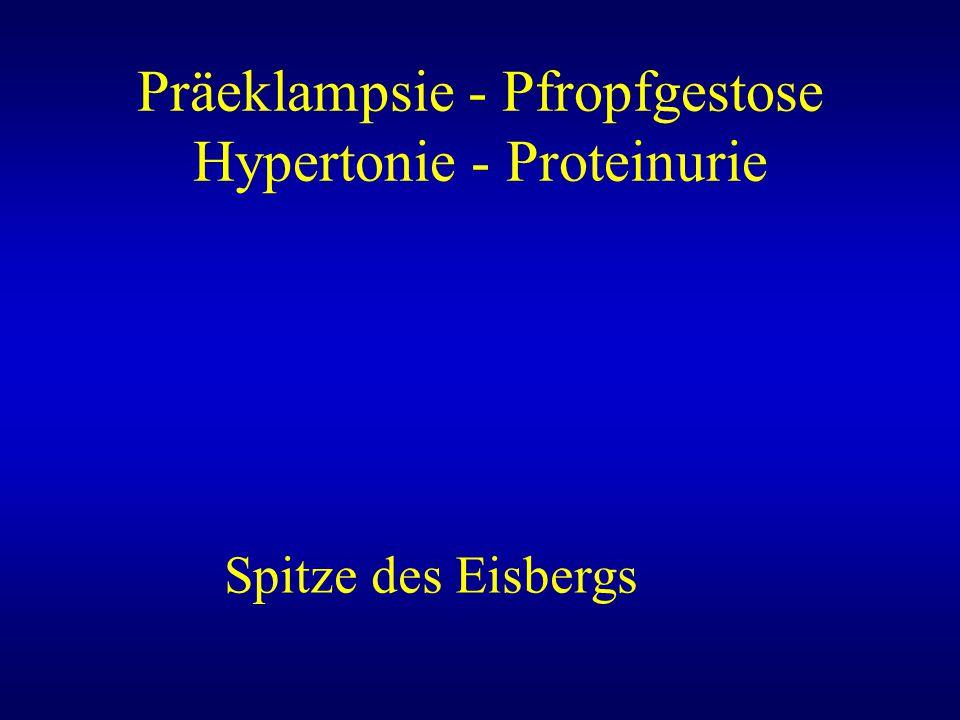 Präeklampsie - Pfropfgestose Hypertonie - Proteinurie