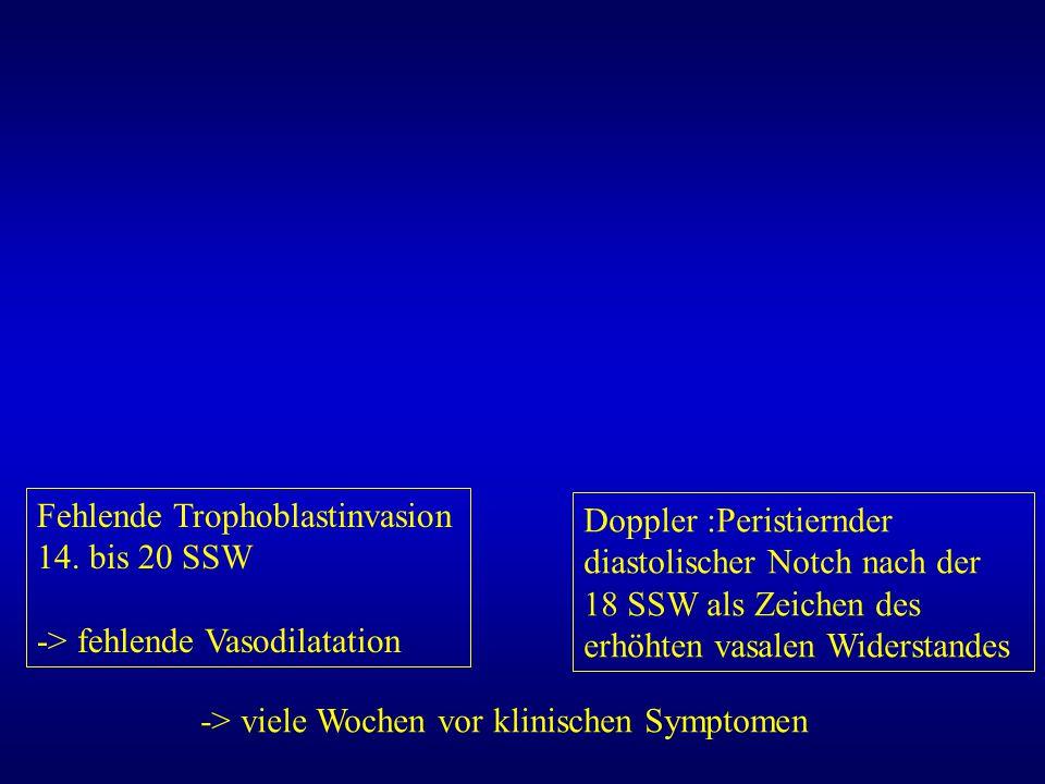 Fehlende Trophoblastinvasion