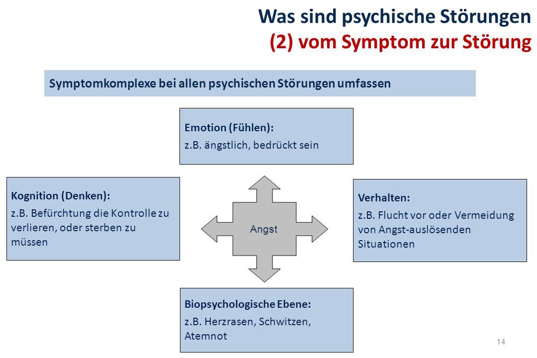 Symptomkomplexe bei allen psychischen Störungen umfassen