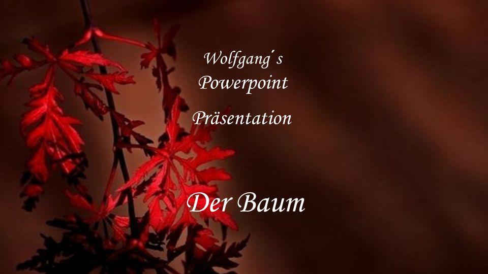 Wolfgang´s Powerpoint Präsentation Der Baum